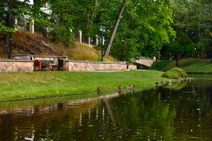 ラトビア・首都リガのダウガヴァ川を巡る観光船から見た緑の木々の映り込みと橋とカモのいる景観の写真素材 [FYI03596606]