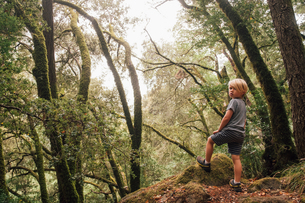 Boy in forest looking over shoulder at camera, Fairfax, California, USA, North Americaの写真素材 [FYI03596629]