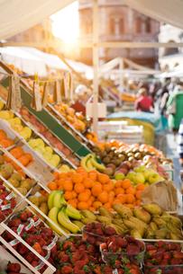 Fruit and veg stall in market, Padua, Veneto, Italy, Europeの写真素材 [FYI03597248]