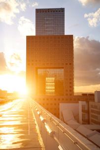 Sunlight on office building, Frankfurt, Hessen, Germany, Europeの写真素材 [FYI03597313]
