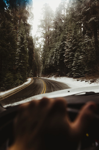 Male hand driving on rural road in Sequoia National Park, California, USAの写真素材 [FYI03597521]