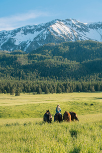 Teenage girl leading four horses by snow capped mountain, Enterprise, Oregon, United States, North Aの写真素材 [FYI03599533]