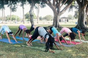 Schoolgirls practicing yoga downward facing dog pose on school sports fieldの写真素材 [FYI03600471]