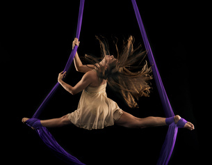 Young female aerial acrobat doing the splits with feet wrapped in silk rope against black backgroundの写真素材 [FYI03601414]