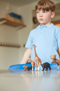 Schoolboy with toy animals in classroom at primary schoolの写真素材 [FYI03602189]