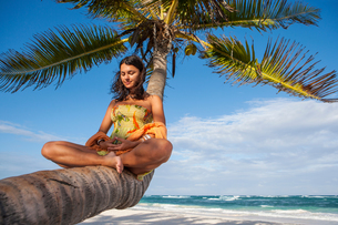Young woman practicing lotus yoga pose on palm tree trunk at beach, Tulum, Quintana Roo, Mexicoの写真素材 [FYI03602786]
