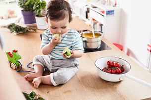 Baby girl sitting on kitchen counter, eating cucumberの写真素材 [FYI03603581]