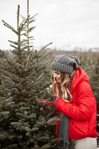 Young woman looking at pine needles while shopping for christmas tree from forestの写真素材 [FYI03604349]