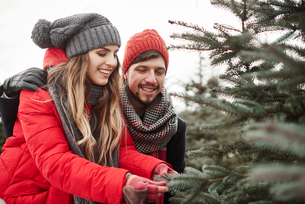 Young couple looking at pine needles while shopping for christmas tree from forestの写真素材 [FYI03604352]