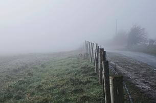 Fence along roadside in rural setting, with mist, Houghton-le-Spring, Sunderland, UKの写真素材 [FYI03604411]
