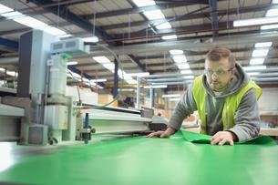 Worker operating vinyl cutting machine in factoryの写真素材 [FYI03604909]
