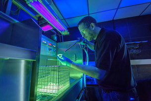 Worker using ultra violet light to detect cracks in electroplating factoryの写真素材 [FYI03605671]