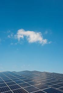 New solar farm constructed on former waste dumpの写真素材 [FYI03605869]