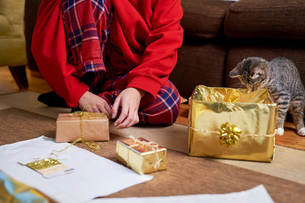 Young woman sitting on living floor wrapping gifts with curious cat, neck down viewの写真素材 [FYI03606094]