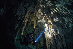 Male diver diving in underground river (cenote) with stalactite rock formations, Tulum, Quintana Rooの写真素材 [FYI03606502]