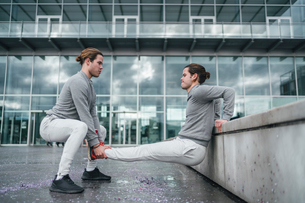 Young adult male twins training together, doing reverse push upsの写真素材 [FYI03606743]