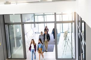 Students entering college building by glass doorsの写真素材 [FYI03606967]