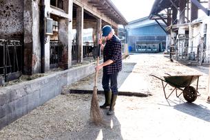 Dairy farm worker sweeping farm yardの写真素材 [FYI03607702]