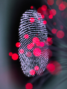 Data infecting a finger print identity on a screen to illustrate hacking and cyber crimeの写真素材 [FYI03608451]