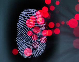 Data infecting a finger print identity on a screen to illustrate hacking and cyber crimeの写真素材 [FYI03608452]
