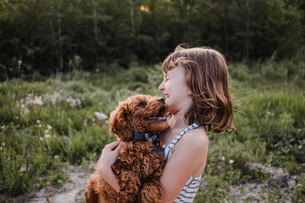 Girl laughing at puppy's kissesの写真素材 [FYI03608566]