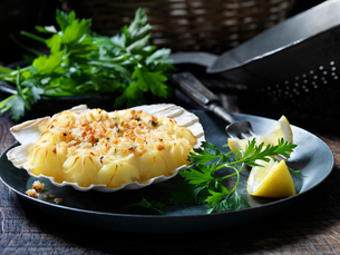 Seafood scallop starterの写真素材 [FYI03609269]