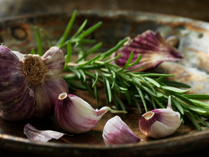 Garlic and rosemaryの写真素材 [FYI03609291]