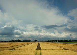 Thunderstorms travelling over Rilland, Zeeland, Netherlandsの写真素材 [FYI03609419]