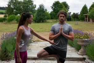 Female yoga teacher teaching young man yoga in garden, tree poseの写真素材 [FYI03609655]