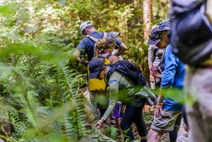 Friends hiking in forest, Johnstone Strait, Telegraph Cove, Canadaの写真素材 [FYI03610362]
