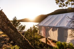Tent in wilderness, Johnstone Strait, Telegraph Cove, Canadaの写真素材 [FYI03610367]