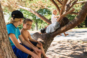 Children relaxing on tree fork in parkの写真素材 [FYI03610785]