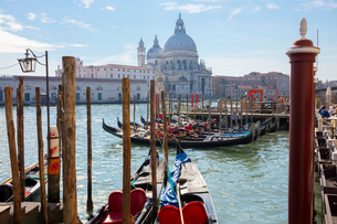 Gondolas on Grand canal near Saint Maria Della Salute church, Venice, Veneto, Italyの写真素材 [FYI03611833]