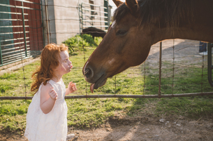 Little girl kissing horse on nose in farmの写真素材 [FYI03611990]