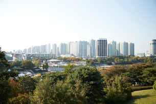 Skyline in daytime, national park in foreground, Seoul, South Koreaの写真素材 [FYI03612424]