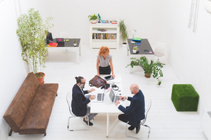 Businessmen and woman using laptops at office meeting, high angle viewの写真素材 [FYI03612825]