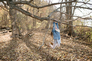 Little girl swinging on tree branch in forestの写真素材 [FYI03613234]