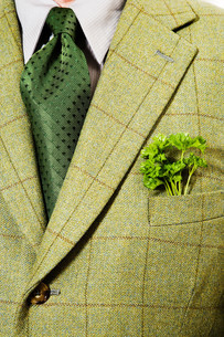 Green checked suit jacket with parsley in pocketの写真素材 [FYI03613610]