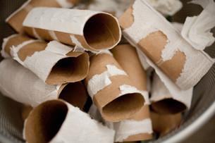 Empty toilet rollsの写真素材 [FYI03613774]