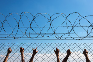 Three people's hands on wire fenceの写真素材 [FYI03613976]