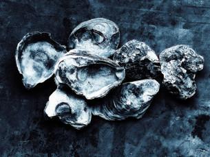 Heap of empty oyster shellsの写真素材 [FYI03614298]