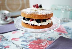 Sponge cake with berries on platterの写真素材 [FYI03614785]