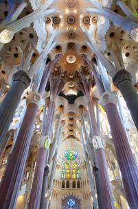 Interior of Sagrada Familia buildingの写真素材 [FYI03615034]