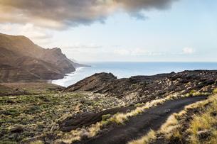 North West coast of Gran Canaria near Agaete, Canary Islands, Spainの写真素材 [FYI03615740]