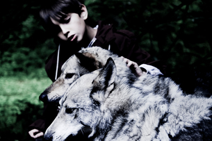 Boy petting dogs in woodland, shallow focusの写真素材 [FYI03616295]