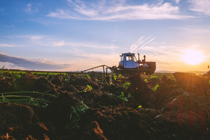 Landscape with agricultural machinery at sunset, surface level viewの写真素材 [FYI03616426]