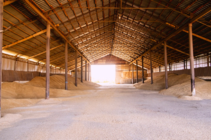 Stacks of harvested grain in agricultural barnの写真素材 [FYI03616433]