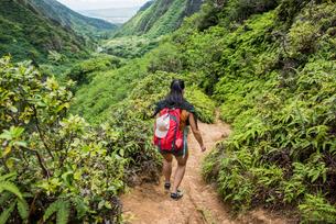 Hiker walking in rainforest, Iao Valley, Maui, Hawaiiの写真素材 [FYI03617366]