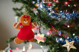 Gingerbread girl Christmas decoration on treeの写真素材 [FYI03617479]