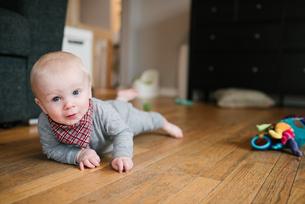 Baby boy crawling on wooden floorの写真素材 [FYI03617546]